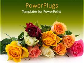 PowerPlugs: PowerPoint template with bunch of colorful roses with water droplets on a green background