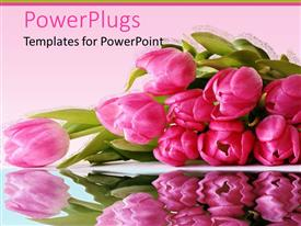 PowerPlugs: PowerPoint template with bunch of pretty pink flowers on a pink background