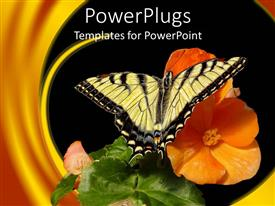PowerPlugs: PowerPoint template with a butterfly on a flower with leaves