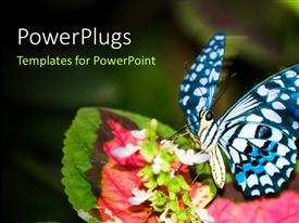 PowerPlugs: PowerPoint template with a butterfly on the flower with greenery in background