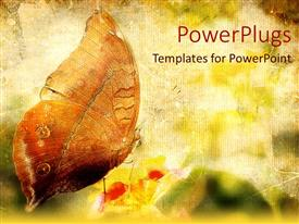 PowerPlugs: PowerPoint template with butterfly landing on flower, green background