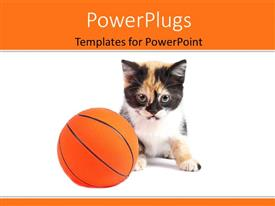 PowerPlugs: PowerPoint template with a cat with a basketball and white background