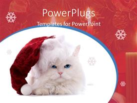 PowerPoint template displaying cat with Christmas cap sitting on white background
