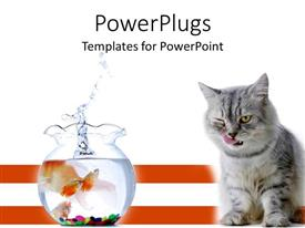 PowerPoint template displaying cat licking lips beside goldfish bowl with splash, red stripes, white background