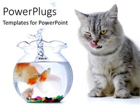PowerPoint template displaying cat watching fish with tongue out in aquarium with water splashing out