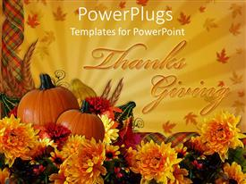 PowerPlugs: PowerPoint template with the celebration of thanks giving with two pumpkins