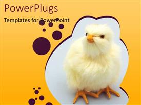 PowerPlugs: PowerPoint template with chick Theme