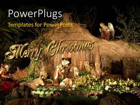 PowerPoint template displaying christmas decorations with beautifulflowers and angel watching over manger