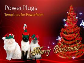 PowerPlugs: PowerPoint template with a Christmas tree with a number of cats