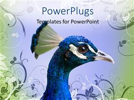 PowerPlugs: PowerPoint template with close-up of a colorful peacock head with vector floral texture