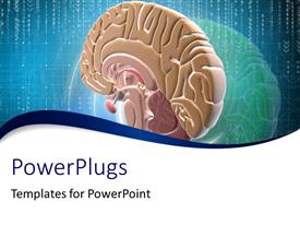 PowerPlugs: PowerPoint template with close-up of scan of human brain on digital background