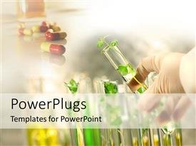 PowerPlugs: PowerPoint template with close-up of small plants in test tubes