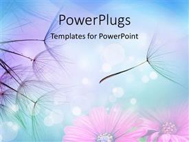 PowerPlugs: PowerPoint template with close up of dandelion seeds in flight against flowers background