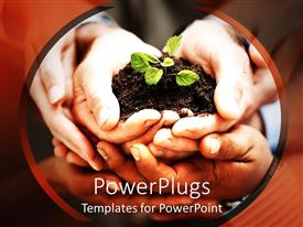PowerPlugs: PowerPoint template with close up of five hands holding handful of soil with small green seedling