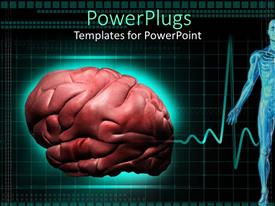 PowerPlugs: PowerPoint template with close up of human brain, half of human body anatomy and cardiogram in the background