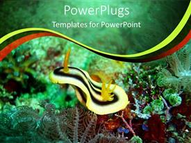 PowerPlugs: PowerPoint template with close up shot of the of plants inside a sea