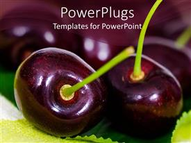 PowerPoint template displaying close up shot of two cherries on a blurry background
