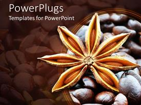 PowerPlugs: PowerPoint template with close up of star anise flower with dark roast coffee beans