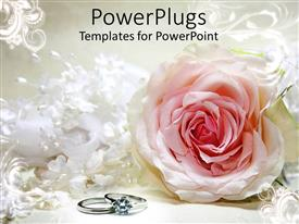 PowerPlugs: PowerPoint template with a close up view of a flower with two rings on a white surface