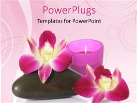 PowerPlugs: PowerPoint template with a cndle with two flowers and a zen stone
