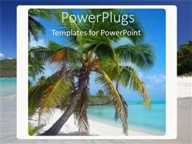 PowerPoint template displaying coconut palm tree on beach in box with ocean landscape, vacation, holiday, travel