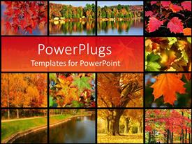 PowerPlugs: PowerPoint template with collage of images representing autumn in the park near a river with autumn leaves and trees