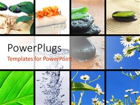 PowerPoint template displaying collage of spa stones and flowers with ice