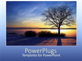 PowerPlugs: PowerPoint template with collage of winter sunset over sea and withered tree on blue background