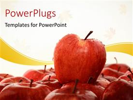 PowerPlugs: PowerPoint template with a collection of red apples with white background