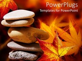 PowerPoint template displaying a collection of zen stones with leaves in the background