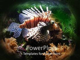 PowerPlugs: PowerPoint template with colored fish swimming at the bottom of a sea