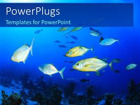 PowerPlugs: PowerPoint template with colorful fishes swimming in the water
