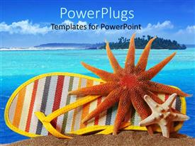PowerPoint template displaying a colorful shoe and a star and jelly fish