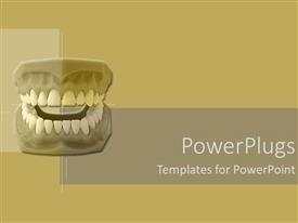 PowerPlugs: PowerPoint template with the complete dentures of a human being on abrown background