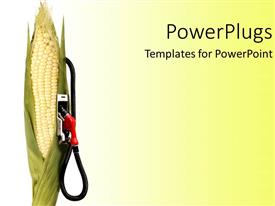PowerPlugs: PowerPoint template with cornstalk with gas pump attached on it, on gradient white to bright yellow background