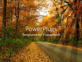 PowerPlugs: PowerPoint template with country road through forest trees in autumn setting with fall leaves on the ground