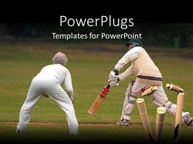 PowerPlugs: PowerPoint template with couple of senior man and woman playing cricket on cricket playground