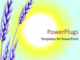 PowerPlugs: PowerPoint template with the crop of wheat with a sun in the background