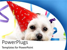 PowerPoint template displaying cute white puppy wearing a red long party cap