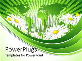 PowerPoint template displaying daisies and grass, green map background