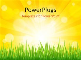 PowerPlugs: PowerPoint template with a day light view of an open grass field