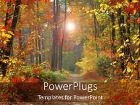 PowerPlugs: PowerPoint template with a day time view of a forest with a walk path
