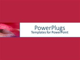 PowerPlugs: PowerPoint template with depiction of a plain pink  and brown background board