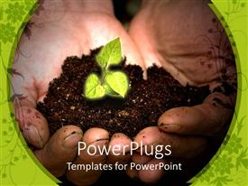 PowerPlugs: PowerPoint template with a depiction of a small plant in the soil in a palm