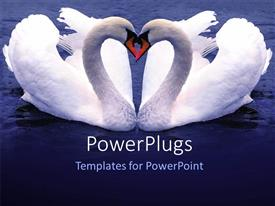 PowerPlugs: PowerPoint template with depiction of two Swan forming love shape over blue background