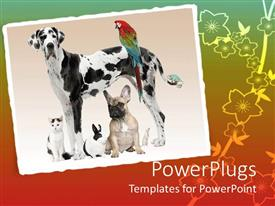 PowerPoint template displaying a depiction of various animals in the same frame with multicolored background