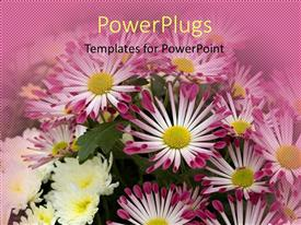 PowerPlugs: PowerPoint template with diverse flowers with tube like petals blossoming in garden