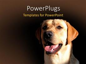 PowerPlugs: PowerPoint template with a dog with brownish background and place for text