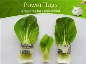PowerPlugs: PowerPoint template with dollar bills with cabbage leafs and a piggy bank