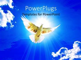 PowerPlugs: PowerPoint template with dove in the air with wings wide open with beautiful glowing sky